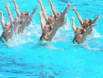 Het Kampioenschap 2009 van de Wereld FINA Royalty-vrije Stock Foto