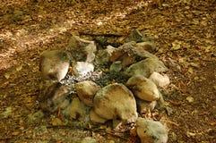 Het kampvuur met stenen Stock Foto's
