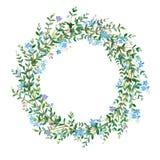 Het kan voor het verfraaien van huwelijksuitnodigingen, groetkaarten en decoratie voor zakken worden gebruikt Slinger met eucalyp royalty-vrije illustratie