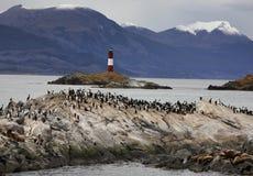 Het Kanaal van de brak - Tierra del Fuego Stock Afbeelding