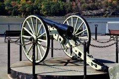 Het Kanon van de Wereldoorlog Ipapegaai Stock Fotografie