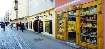 Het kapitaal van de Vilniusstad van het centrummening van Litouwen Stock Foto's