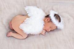 Het karakter van de leuke slaap pasgeboren engel Stock Afbeelding