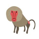 Het karakter van het bavianenbeeldverhaal Royalty-vrije Stock Afbeeldingen
