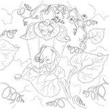 Het karakter van het feebeeldverhaal De slaap van de glimwormfee in de bladeren Pagina kleurend boek Geïsoleerde vector Stock Foto