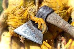 Het karkas van de gedode eend van het huislandbouwbedrijf en haar bijl Het landbouwbedrijf ` s Stock Foto's