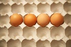 Het karton van het ei met 4 eieren Stock Foto's
