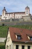 Het Kasteel en zijn wijngaard Duitsland van Wurzburg Royalty-vrije Stock Foto's