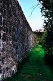 Het kasteel fortificated muur met groen Stock Afbeeldingen
