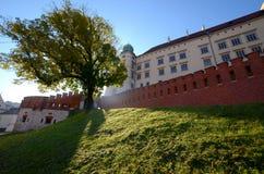 Het kasteel in Krakau Wawel Stock Foto