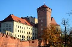 Het kasteel in Krakau Wawel Stock Fotografie