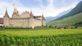 Het kasteel van Aigle Vandaag is het kasteel naar huis aan Wijnstok en Royalty-vrije Stock Afbeelding