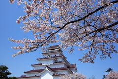 Het Kasteel van Aizuwakamatsu en kersenbloesem Stock Foto