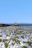 Het kasteel van Ballybunion ruïneert sneeuw behandelde scène Royalty-vrije Stock Foto's