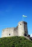 Het Kasteel van Cardiff stock afbeelding