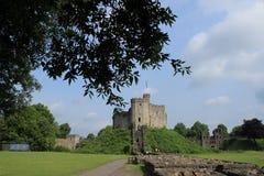 Het Kasteel van Cardiff met de vlag in de stad Cardiff stock afbeeldingen