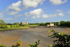 Het kasteel van Carew en getijdemolen, Wales Royalty-vrije Stock Foto