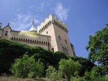 Het kasteel van de ruïne Stock Fotografie