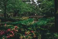 Het kasteel van de de tuinbrug van Japan stock afbeelding