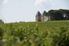 Het kasteel van de wijngaard stock foto's