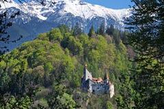 Het kasteel van Dracula in Zemelen, Transsylvanië, Brasov, Roemenië Royalty-vrije Stock Fotografie