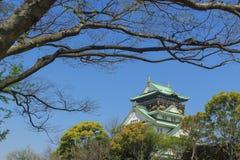 Het kasteel van Himeji, Japan stock fotografie