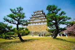 Het Kasteel van Himeji met 2 pijnboombomen royalty-vrije stock afbeelding