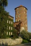 Het kasteel van Krakau Stock Foto's