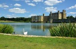Het kasteel van Leeds Zwaan op de gracht Kent het UK stock fotografie