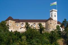 Het kasteel van Ljubljana Stock Fotografie