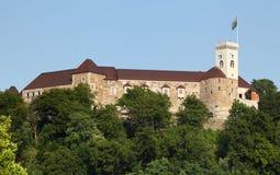 Het kasteel van Ljubljana, Slovenië, Europa Stock Foto's