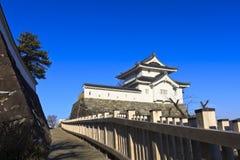 Het Kasteel van Maizuru van Kofu, Japan. stock afbeeldingen