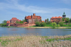 Het Kasteel van Malbork, Pomerania, Polonia Stock Foto's