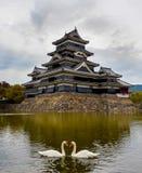 Het kasteel van Matsumoto in de herfst met twee zwanen Stock Foto