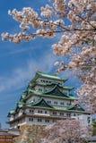 Het Kasteel van Nagoya tijdens de lente stock foto