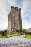 Het Kasteel van O'Dea van Dysert, Co. Clare - Ierland. Stock Afbeelding