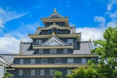 Het kasteel van Okayama binnen Stock Fotografie