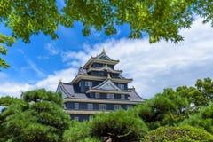 Het Kasteel van Okayama of Kraaikasteel Stock Foto