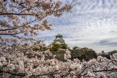 Het kasteel van Osaka en een toeristenboot in de stadsgracht stock afbeeldingen
