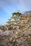 Het kasteel van Osaka en kersenbloesem, Osaka, Japan stock afbeeldingen