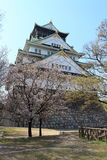 Het Kasteel van Osaka, Japan Stock Foto