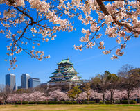 Het kasteel van Osaka, Osaka, Japan Royalty-vrije Stock Foto's