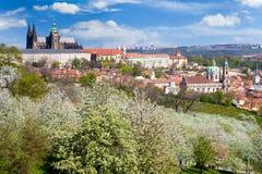 Het kasteel van Praag en Kleinere stad, Praag (Unesco), Tsjechische republiek Royalty-vrije Stock Fotografie