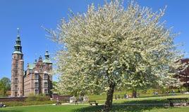 Het Kasteel van Rosenborg Royalty-vrije Stock Foto