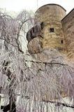 Het kasteel van Salzburg Royalty-vrije Stock Foto's