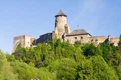 Het Kasteel van Staralubovna Royalty-vrije Stock Fotografie