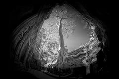 Het Kasteel van Ta prohm in Siem oogst Provincie Kambodja stock foto's