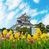 Het Kasteel van Toyama in de prefectuur van Toyama stock afbeelding