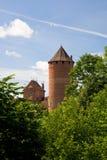 Het kasteel van Turaida Royalty-vrije Stock Fotografie