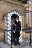 Het kasteelwacht van Praag Stock Afbeelding